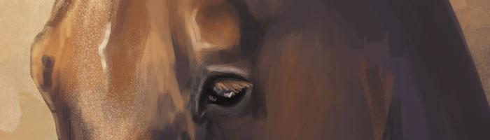 caballo02